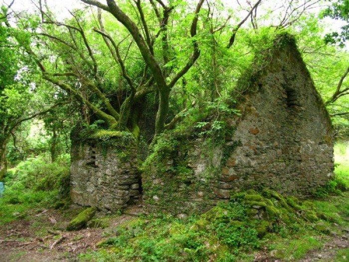 Заброшенные и таинственные места Земли, фото - Пешая дорожка между Сним и Кенмаре в Ирландии