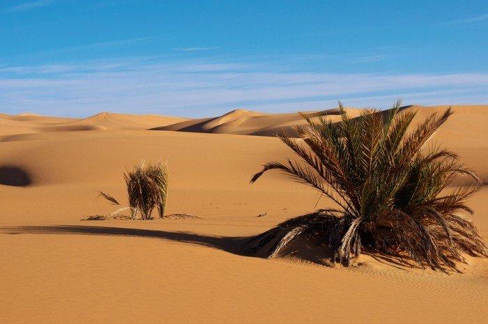 Тайны Сахары, фото 6
