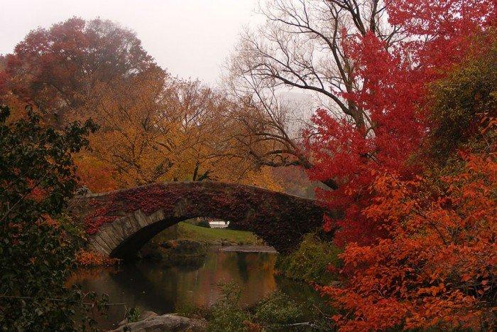 Гарні осінні фото природи. Міст Гепстоу, США, Нью-Йорк