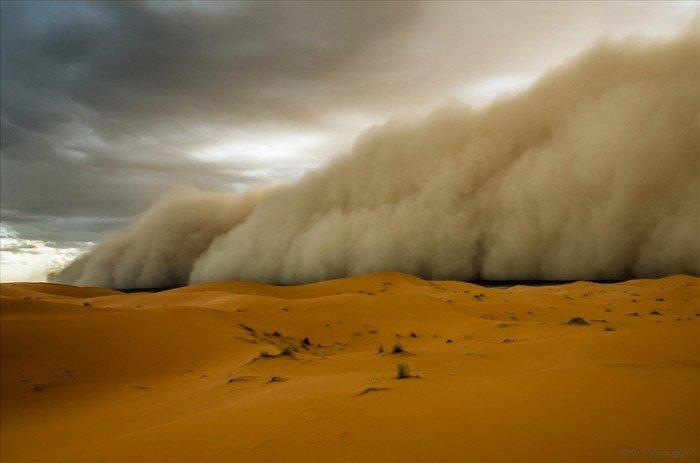 Тайны Сахары, фото 7