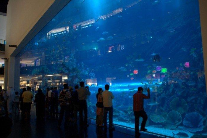 Самые большие аквариумы в мире - Дубай, фото 4