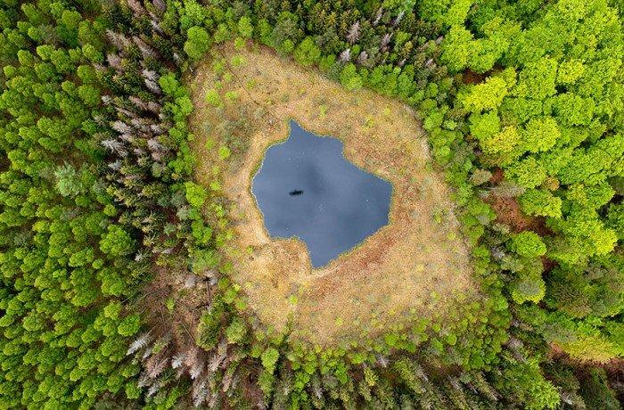 Лесное озеро, Польша летом