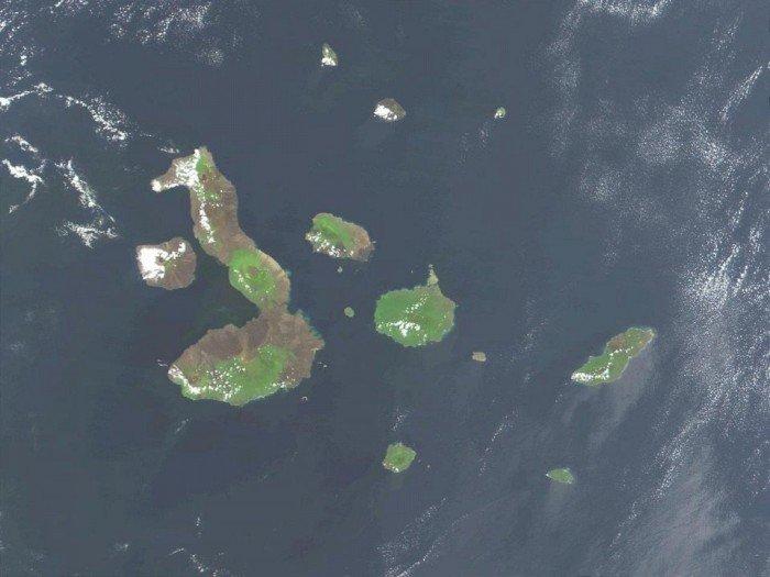 Незвичайні острови, фото - острів у вигляді морського коника