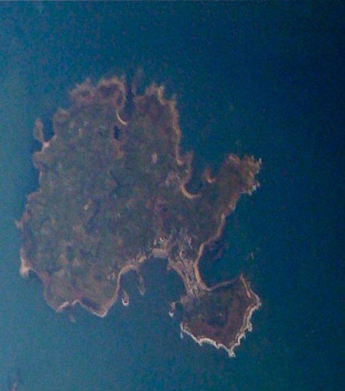 Необычные острова, фото - остров-дерево Бонсай