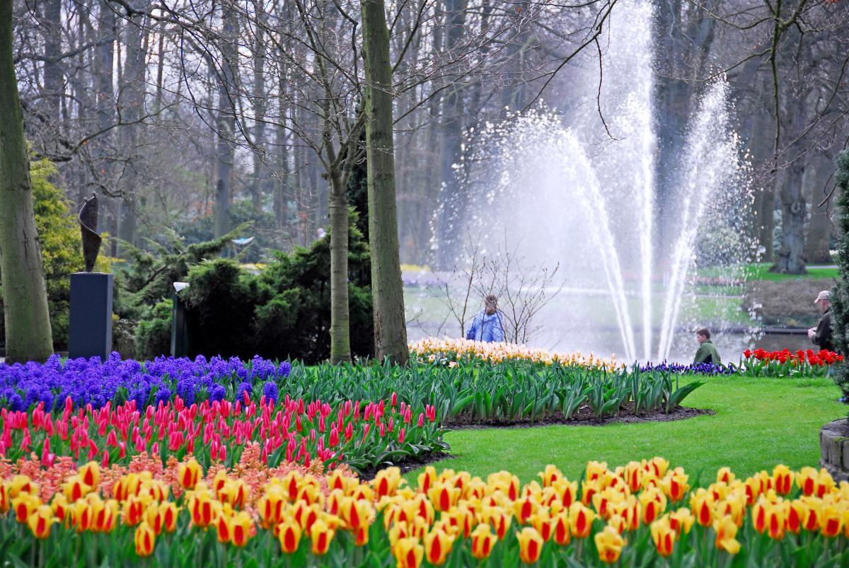 Весенний парк цветов у Кёкенхоф
