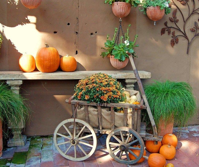 У гостях у осені