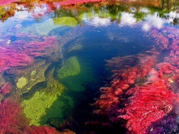 Цветная река