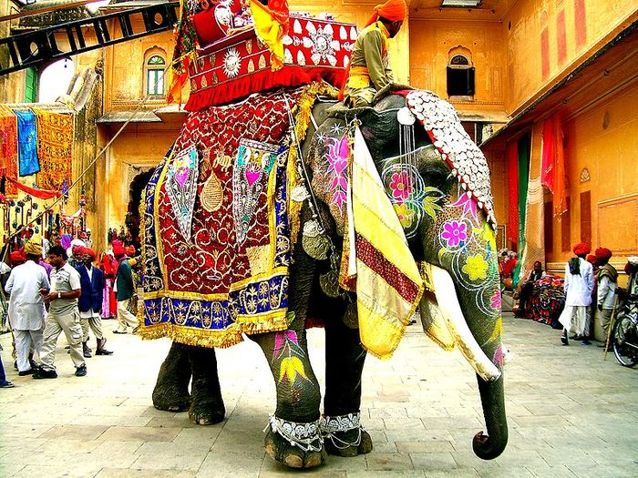 Як шанують слона у світі