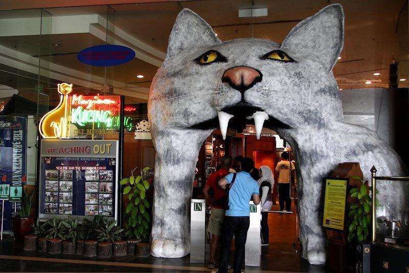 Музей кішок, Кучинг