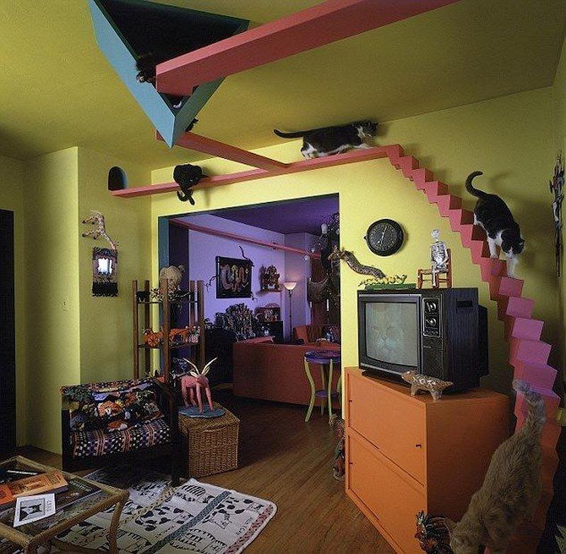 Будинок для котів, Сан-Дієго