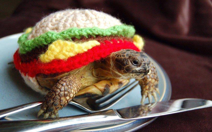 Вязаные костюмы для черепах фото 5, буррито