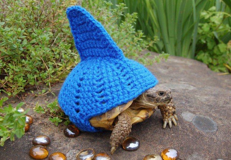 Вязаные костюмы для черепах фото 4, акула