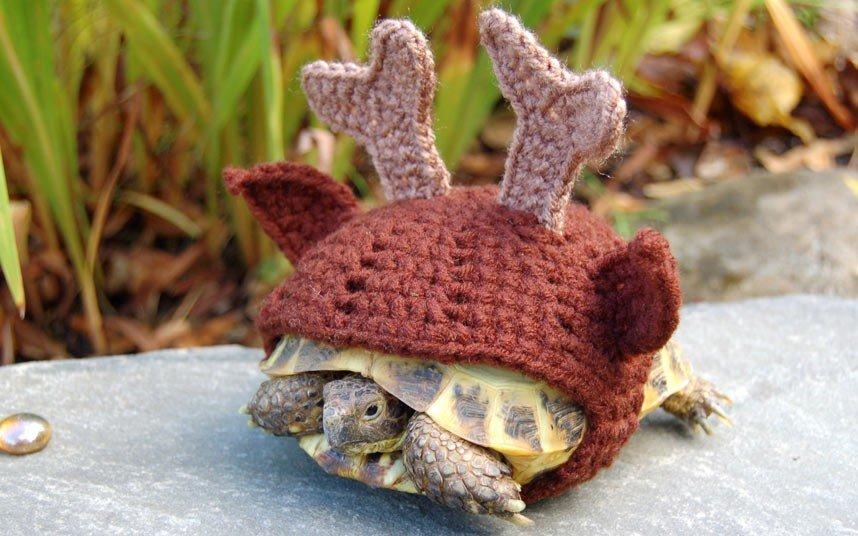 В'язані костюми для черепах фото 6, олень