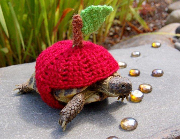 В'язані костюми для черепах фото 9, яблуко