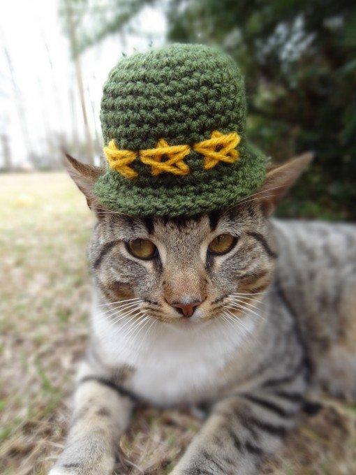 Шапочки для котів від Меридіт Ярборо