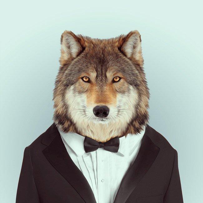 Зоопортрети вовк