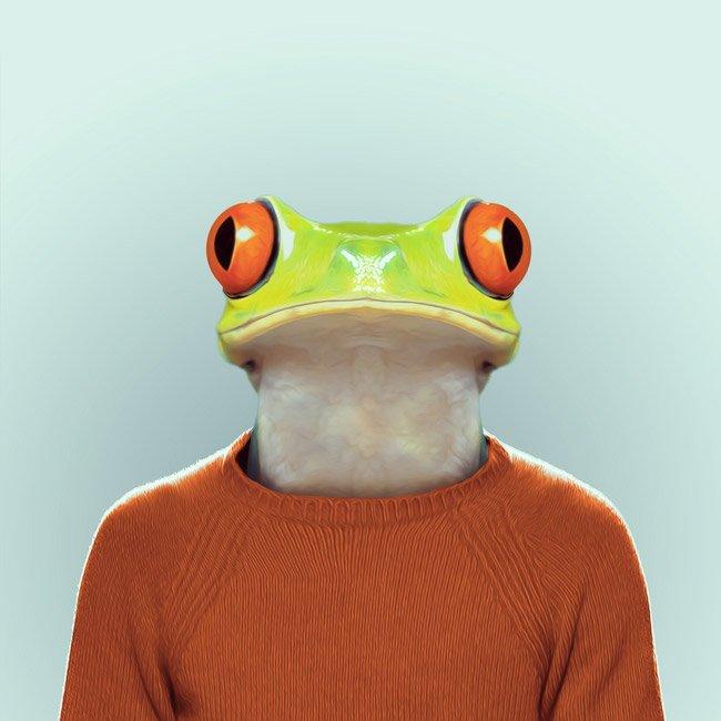 Зоопортрети жаба