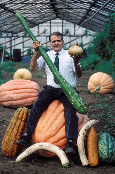 Овощи-гиганты - фото 4