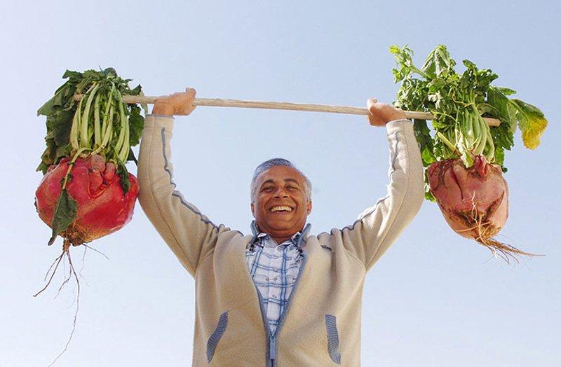 Овощи-гиганты - фото 6