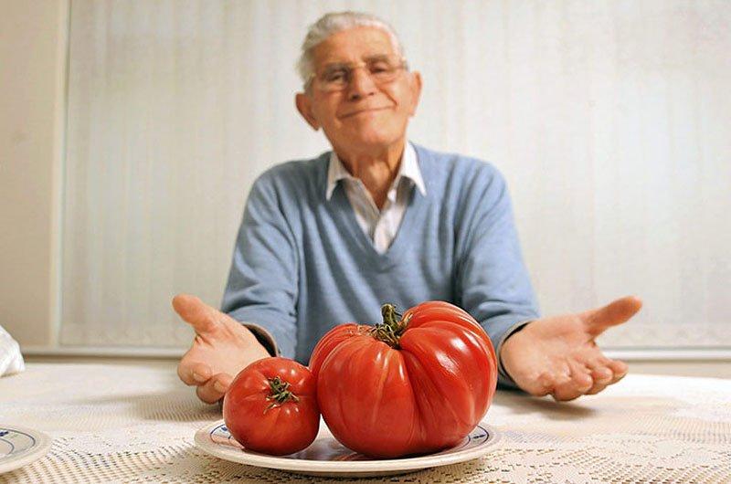 Овощи-гиганты - фото 8