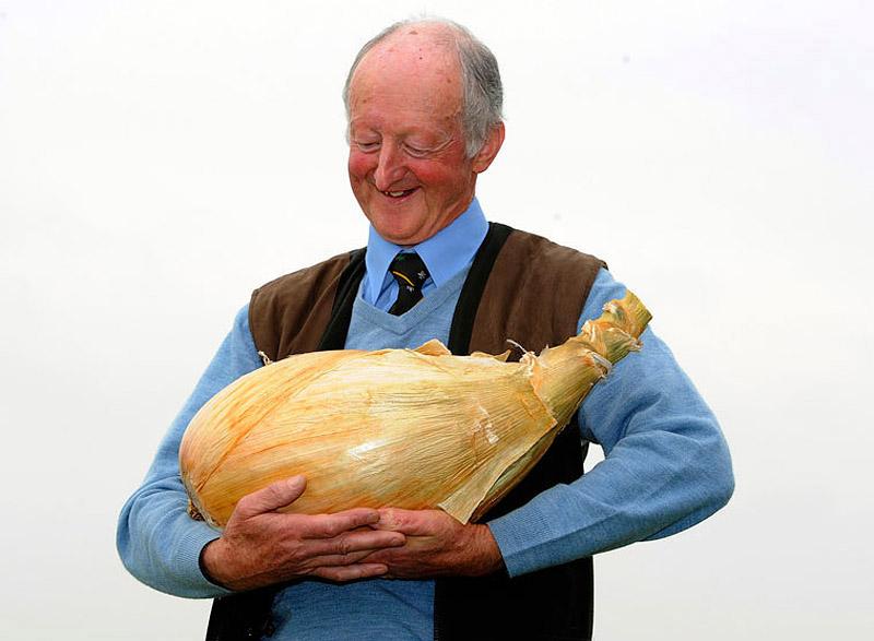 Овощи-гиганты - фото 13