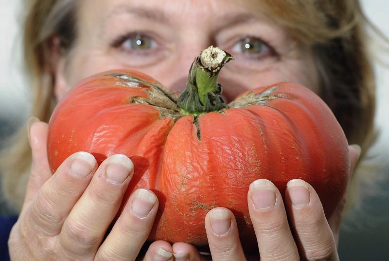 Овощи-гиганты - фото 7