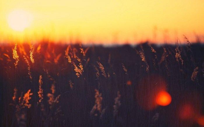 Вірші, з якими не страшні труднощі
